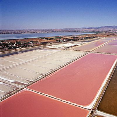 Lithium Recovery From Salt Lake Brines